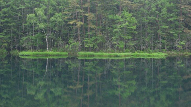 水面に木々が映り込む御射鹿池の写真